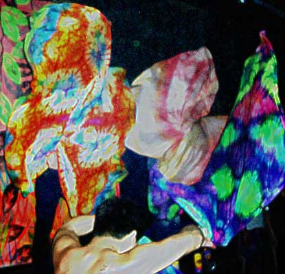 Purple Party 03 – Dallas – Flagging