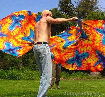 Flagging in the Park-SF05